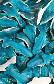 delfines-azules_0_0_180_355_1621